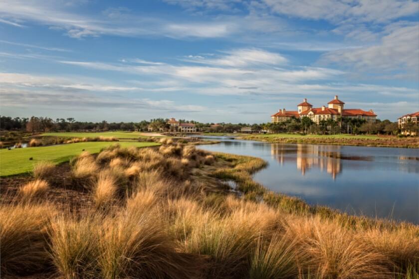 Tiburón Golf Club [Gold Course], Hole No. 9 | Par 4