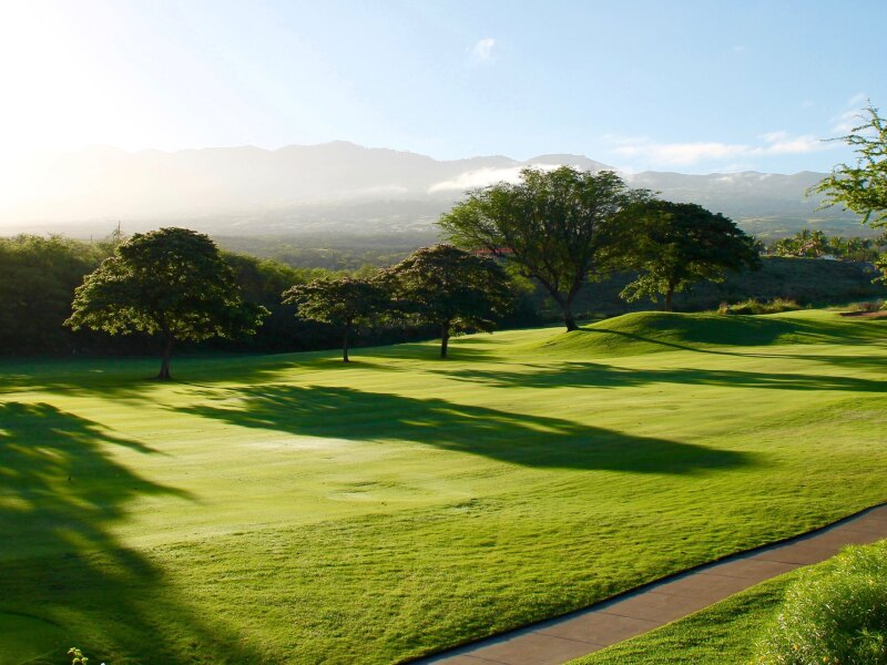 Golf News Hub