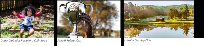 Arnold & Winnie Palmer Foundation collage