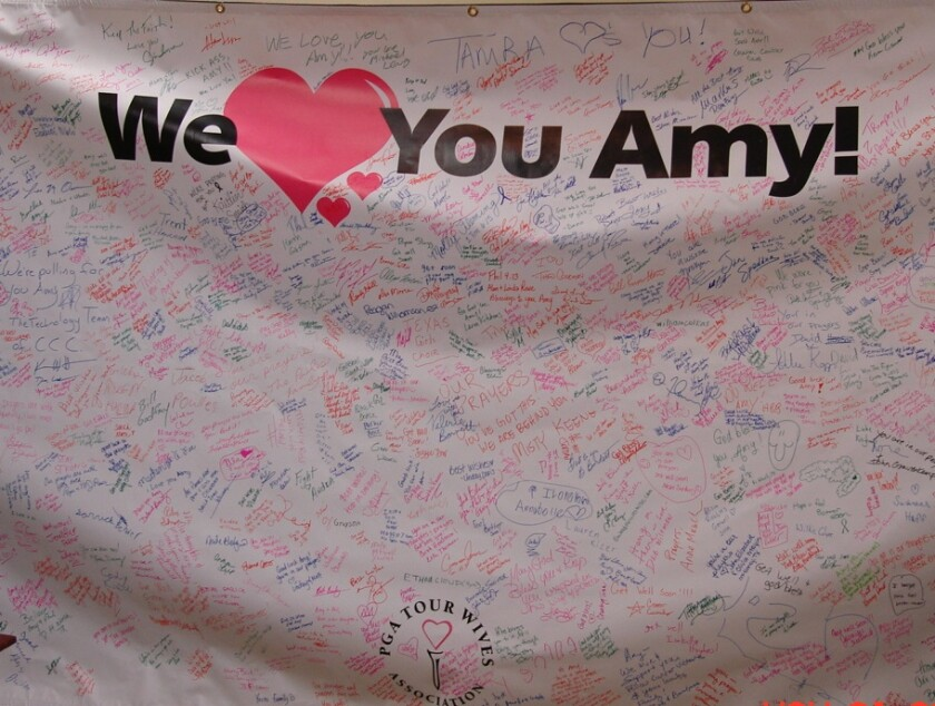 We Love You Amy
