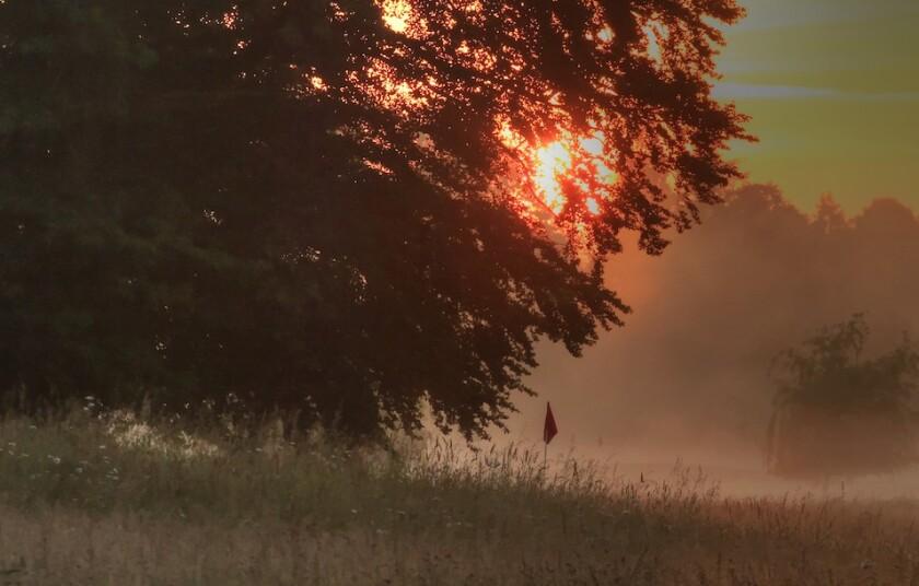 Golf scene at sunrise