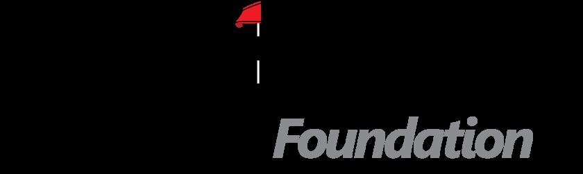 DN Foundation — Logo