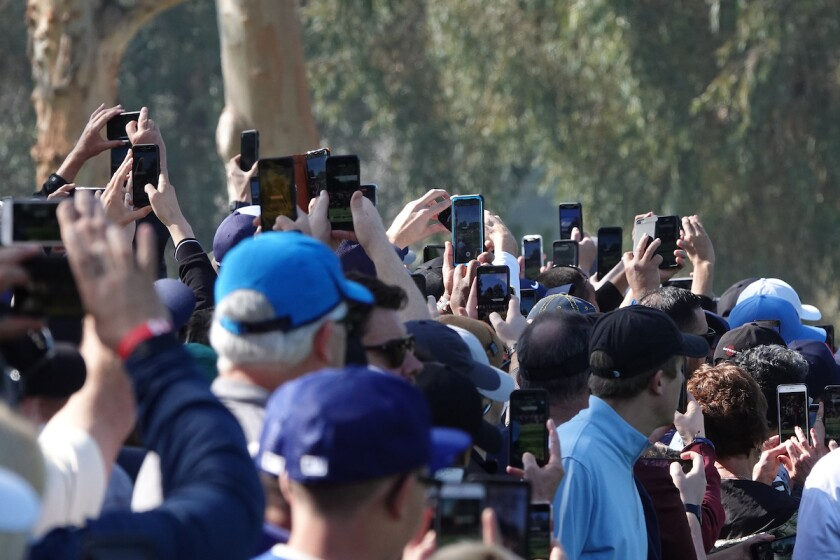 Golf fans with cellphones