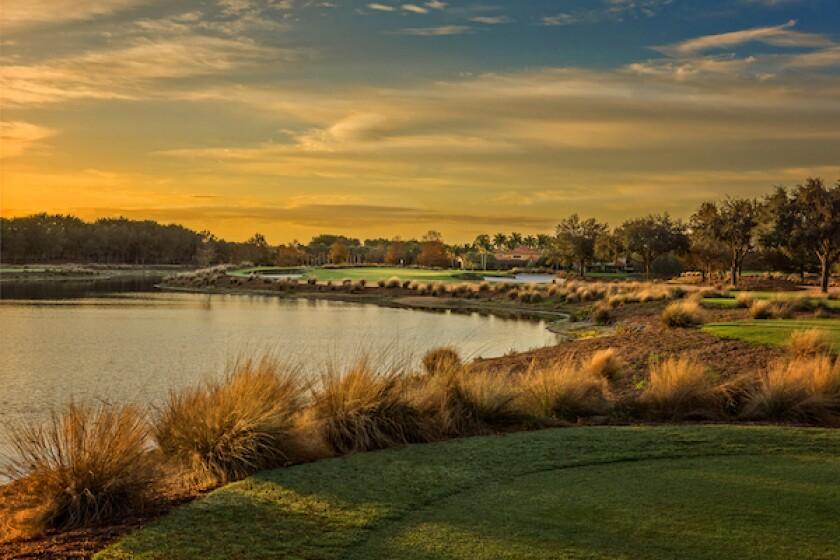 Tiburón Golf Club [Gold Course], Hole No. 5 | Par 3