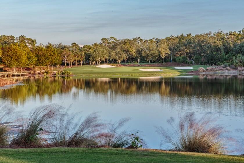 Tiburon Golf Club | Black Course — Hole 10