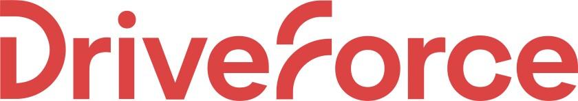 DF - Primary Logo - Flagstick.jpg