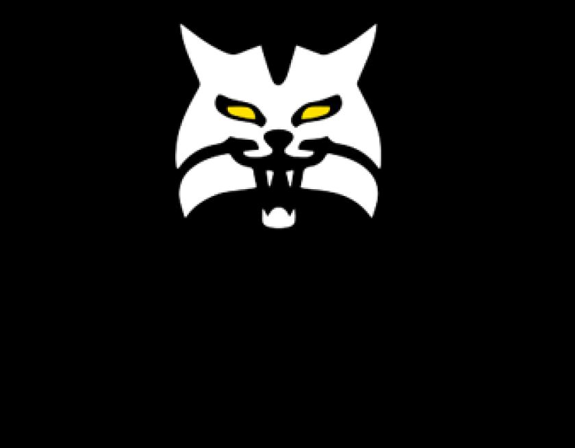 Lynx%20Logo2.png