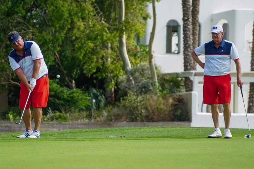 Golf chip in.jpg