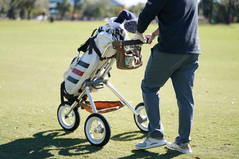 Walker Trolleys with bag