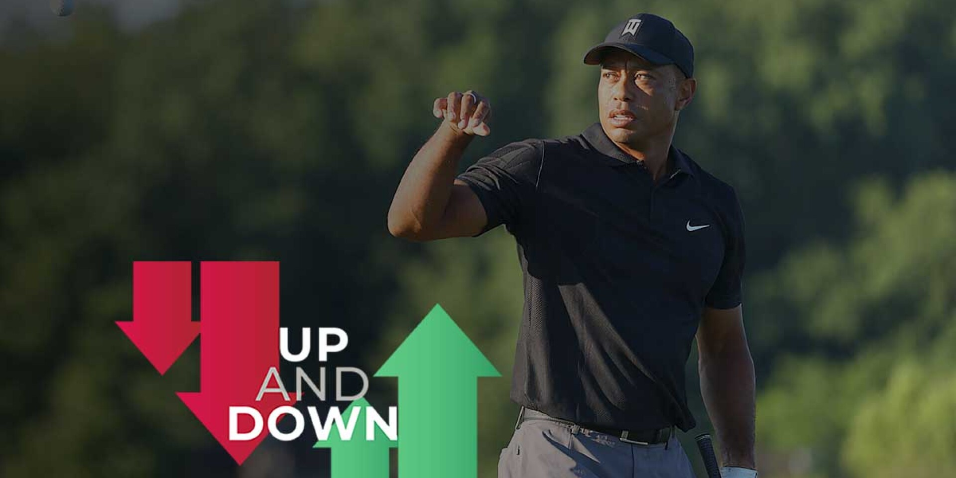 Tiger Woods Up and Down