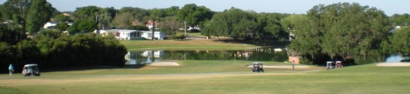 Villages-golfers.jpg
